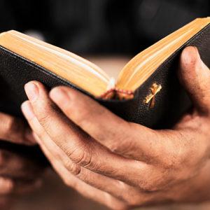 Bible Hands